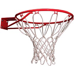 Lifetime 5818 Classic Basketball Rim