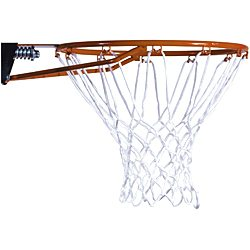 Lifetime Slam It Basketball Rim